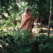 Reforestation, Afforestation, Deforestation, Climate Change and gender