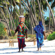 Tanzania: National strategy on gender and climate change