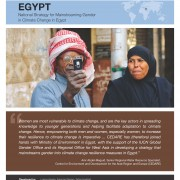 Egypt: National Strategy for Mainstreaming Gender in Climate Change in Egypt