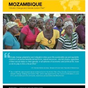 Mozambique: Climate Change and Gender Action Plan
