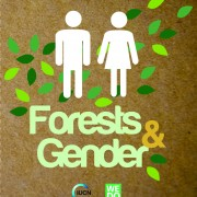 Forests & Gender
