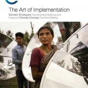 The Art of Implementation: Gender Strategies Transforming National and Regional Climate Change Decision Making