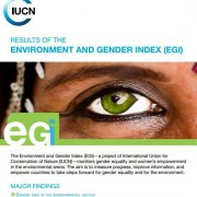 Results of the Environment and Gender Index (EGI)