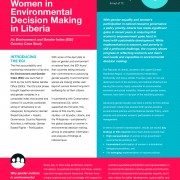 Women in Environmental Decision Making in Liberia