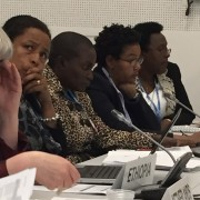 TWO-YEAR PROGRAMME ON GENDER UNDER THE UNFCCC