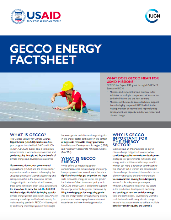 GECCO Energy Factsheet