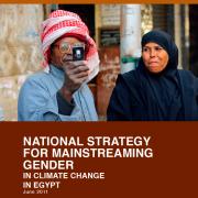 Egypt Climate Change Gender Action Plan (ccGAP) Report