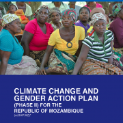 Mozambique Climate Change Gender Action Plan (ccGAP) Report