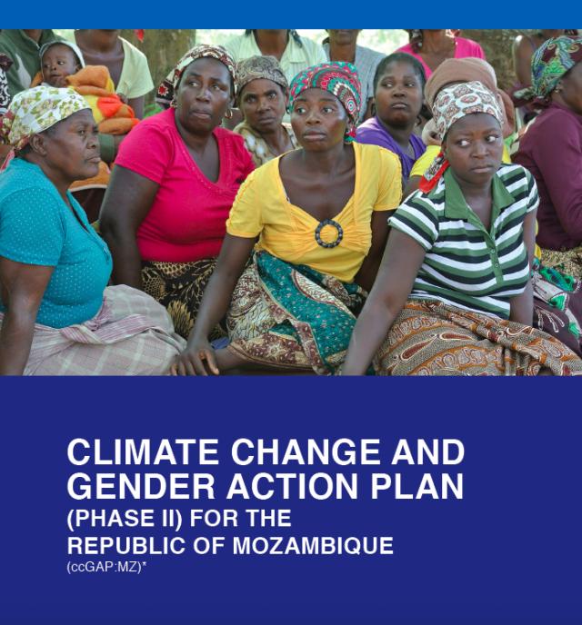Mozambique ccGAP