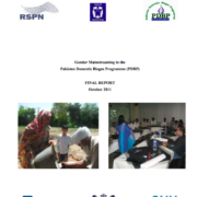 Gender Mainstreaming in the Pakistan Domestic Biogas Programme