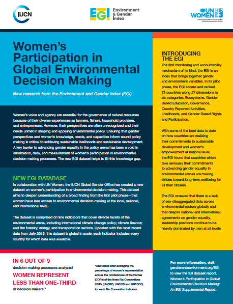 EGI decision making factsheet