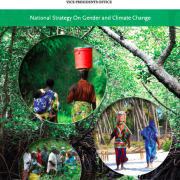 Tanzania Climate Change Gender Action Plan (ccGAP) Report