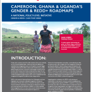 Cameroon, Ghana & Uganda's Gender & REDD+ Roadmaps: A National, Policy-Level Initiative