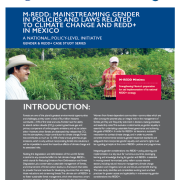M-REDD: Mainstreaming Gender in Policies and Laws Related to Climate Change and REDD+ in Mexico: A National, Policy-Level Initiative