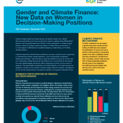 Gender and Climate Finance: New Data on Women in Decision-Making Positions