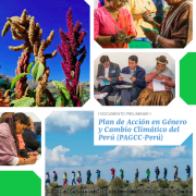 Peru Climate Change Gender Action Plan (ccGAP) Report