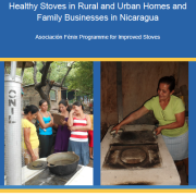 Healthy Stoves in Rural and Urban Homes and Family Businesses in Nicaragua: Asociación Fénix Programme for Improved Stoves