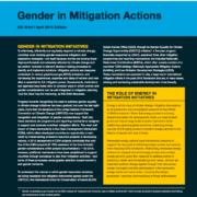 Gender in Mitigation Actions: EGI Brief