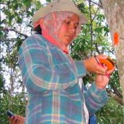 Toma de decisiones y participación de las mujeres en Áreas Naturales Protegidas (ANP)