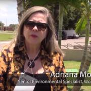 Building Sustainable Landscapes through Gender-Responsive Restoration in Brazil
