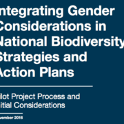 Integrating Gender Considerations in National Biodiversity Strategies and Action Plans: Pilot Project Process and Initial Considerations