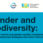 Report: Gender and biodiversity: Analysis of women and gender equality considerations in National Biodiversity Strategies and Action Plans (NBSAPs)