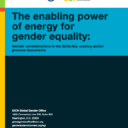 The Enabling Power of Energy for Gender Equality: Gender Considerations in the SEforALL Country Action Process Documents
