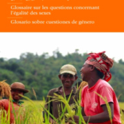 IFAD Glossary on Gender Issues