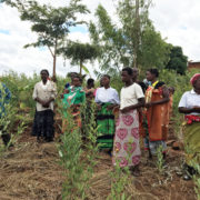 Planting roots for a sustainable and equitable future