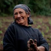 Igualdad de género en REDD+: Sistematización y lecciones aprendidas en el proceso de preparación en México