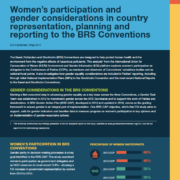 Women's participation and gender considerations in country representation, planning and reporting to the BRS Conventions