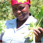 A Powering Agriculture Guide on Integrating Gender in the Deployment of Clean Energy Solutions for Agriculture