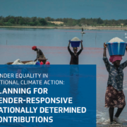 Gender Equality in National Climate Action: Planning for Gender-Responsive Nationally Determined Contributions