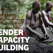 Strengthening Enterprises through Gender Capacity Building