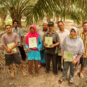Interview with John Knox: what causes violence against environmental defenders?