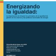 Energizando la igualdad: La importancia de integrar los principios de la igualdad de género en los marcos y las políticas nacionales de energía