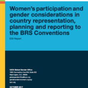Report: Women's participation and gender considerations in country representation, planning and reporting to the BRS Conventions