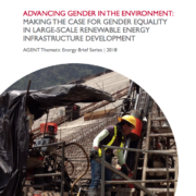 Brief: Advancing Gender in the Environment (AGENT) – Making the Case for Gender Equality in Large-Scale Renewable Energy Infrastructure Development