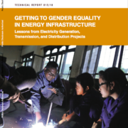 Getting to Gender Equality in Energy Infrastructure: Lessons from Electricity Generation, Transmission and Distribution Projects