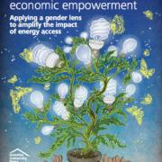 Women, energy and economic empowerment