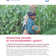 Advancing Gender in the Environment (AGENT) Brochure
