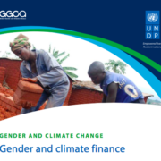Gender and climate finance