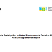 Women's Participation in Global Environmental Decision Making: An EGI Supplemental Report