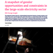 A snapshot of gender opportunities and constraints in the large-scale electricity sector