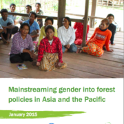 Mainstreaming gender into forest policies in Asia and the Pacific