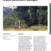 Gender-based impacts of commercial oil palm plantations in Kalangala