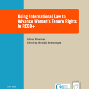 Using International Law to Advance Women's Tenure Rights in REDD+