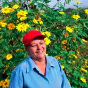 Examples of innovative women's mitigation activities in IUCN ccGAPs: Cuba