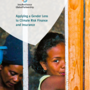 Applying a Gender Lens to Climate Risk Finance and Insurance
