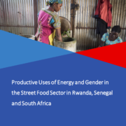 Productive Uses of Energy and Gender in the Street Food Sector in Rwanda, South Africa and Senegal